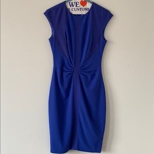 Ted Baker London Blue dress